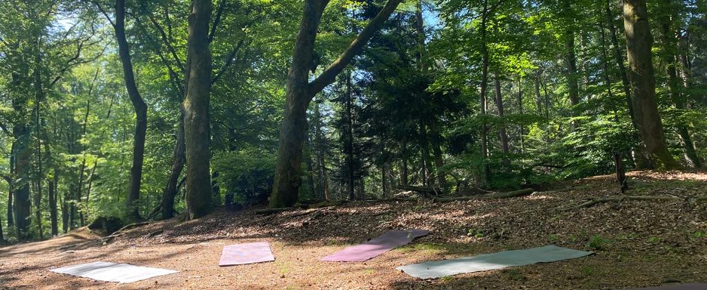 Buiten yoga Hemelseberg