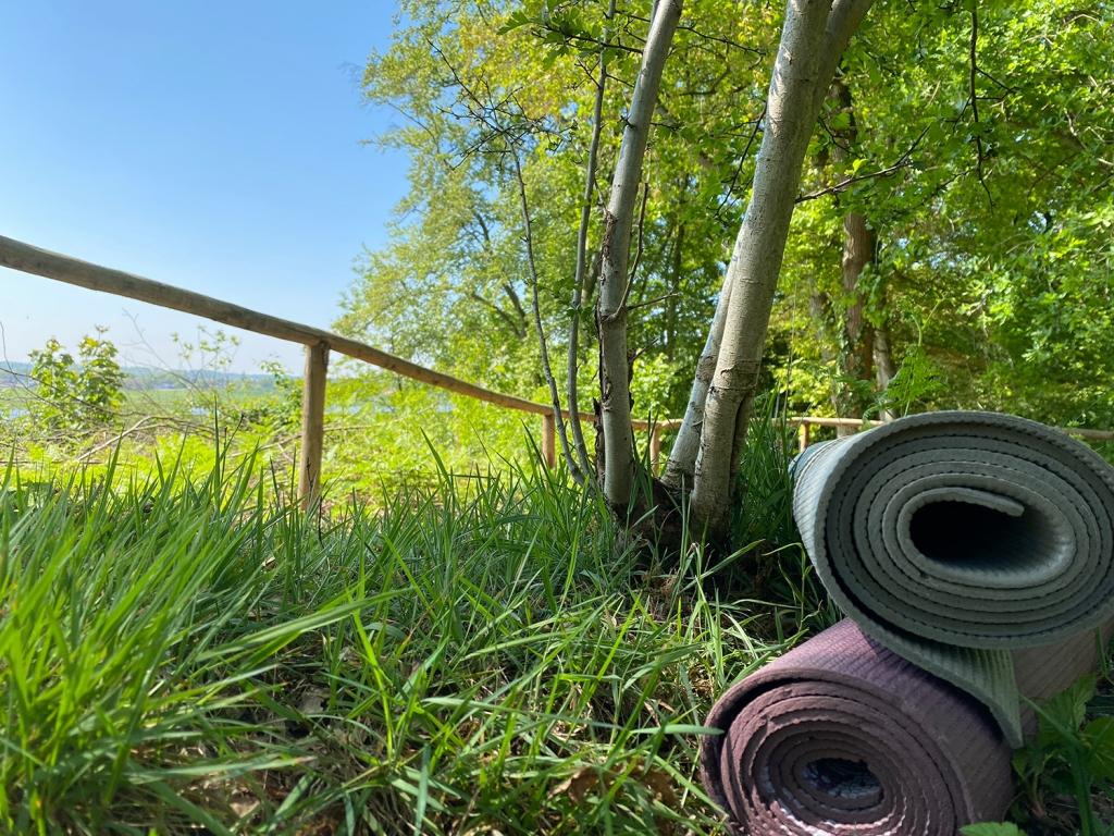Buiten yoga oosterbeek