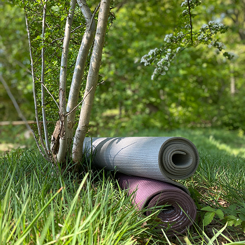 Bedrijfs yoga outdoor yoga buiten yoga